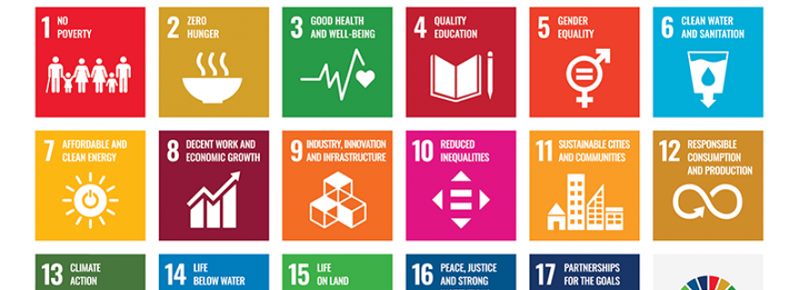 Consensus and dissensus in 'mappings' of science for Sustainable Development Goals (SDGs)