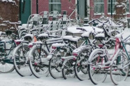 Utrecht lunch walks: an initiative to cope with remote working